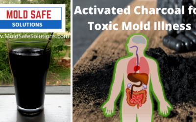 Activated Charcoal for Mold Illness